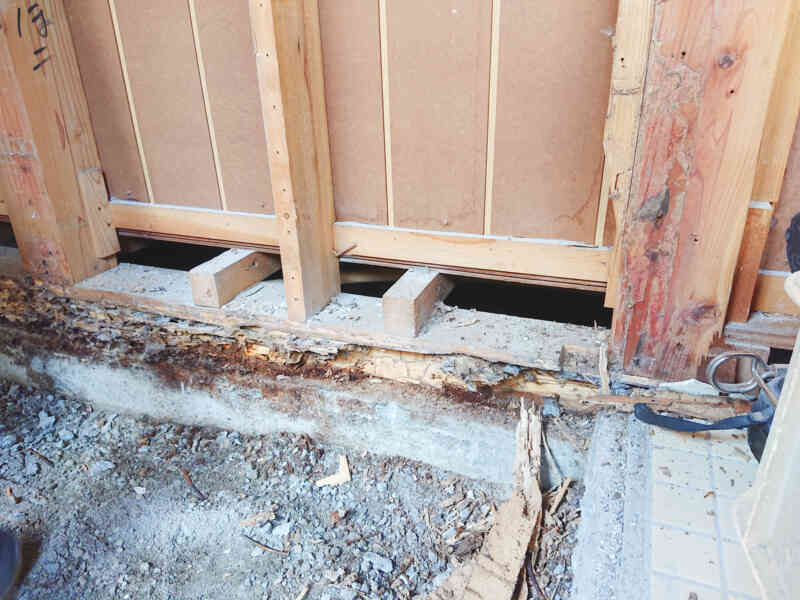白蟻被害にあった柱や土台②