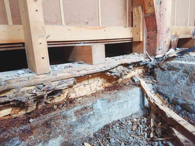 白蟻被害にあった柱や土台④
